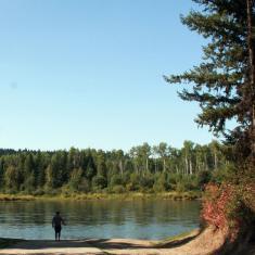 Wilkins Regional Park
